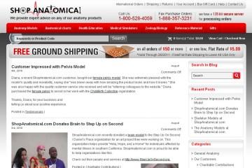 Shop Anatomical Blog