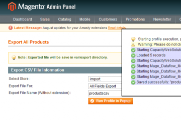 Magento Import Export Products with categories, multiple images and custom options